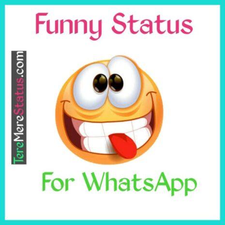 funny whatsapp status, funny whatsapp status in hindi, funny whatsapp status hindi,funny whatsapp status images,funny whatsapp status quotes, funny whatsapp status video,funny whatsapp status ideas, funny whatsapp status download