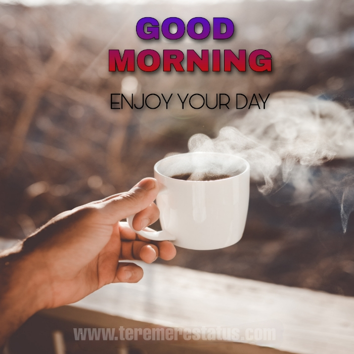 Good Morning Images,  Good Morning Images with Quotes for Whatsapp, Good Morning Images Download, Good Morning Quotes, Good Morning Images HD, Very Good Morning Images, Good Morning Images Monday, Good Morning Images Tuesday, Good Morning Images Saturday, Good Morning Images Friday, Good Morning Images Sunday