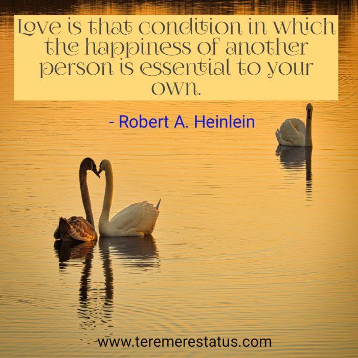 romantic in love quotes
