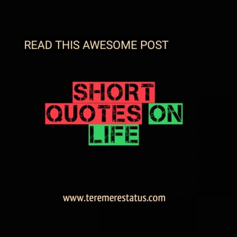 Short Quote on Life