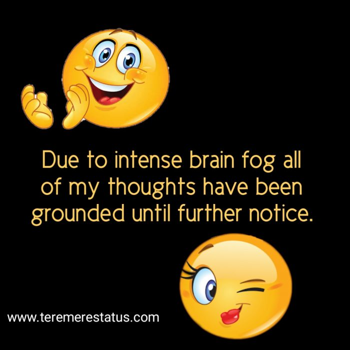 Funny Quotes and Saying