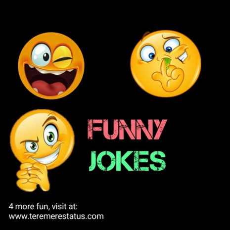 Funny Jokes with Images