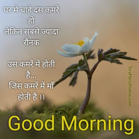 good morning flowers with messages in hindi