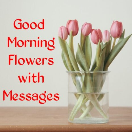 Good Morning Flowers with Image
